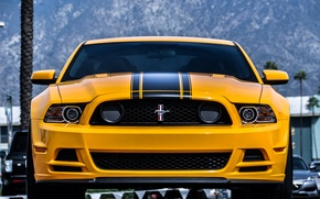 Picture Mustang, Ford, Yellow, Boss 302, Yellow, The front