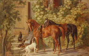 Wallpaper dogs, picture, horse, dobycha, after the hunt
