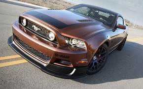 Picture Mustang, Ford, RTR, 2013