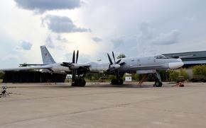 Wallpaper the plane, Russian bear, bomber, Tu-95