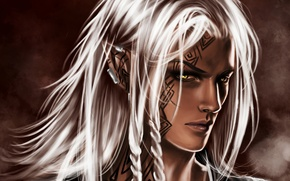 Wallpaper elf, white hair, guy