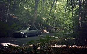Picture road, forest, grey, BMW, BMW, sedan, E30, The 3 series