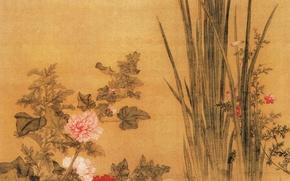 Picture flowers, China, Yu Bai