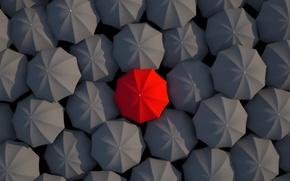 Picture umbrellas, red, black, umbrella