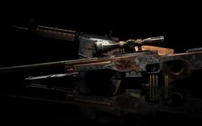 Picture animals, cartridges, engraving, rifle, workshop, cs go, trophy hunt