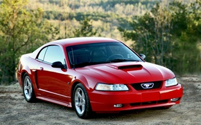 Picture Mustang, Ford, red, 2004