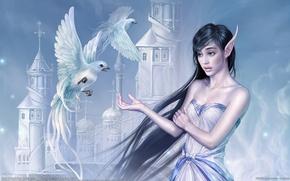 Picture girl, birds, castle, Wallpaper, China, elf, fantasy, China, girl, fantasy, Tang Yuehui, birds, castle, CG …