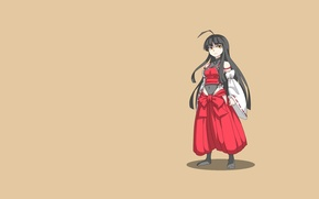 Picture look, girl, clothing, minimalism, anime, is, long hair, yellow background, combat, fighting, mugen, dark hair, …