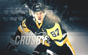 Picture Penguins, NHL, Pittsburgh, Hockey, Sidney, Crosby