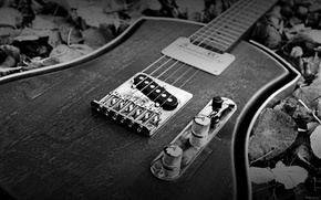 Picture style, guitar, black and white, strings, case, tool, music
