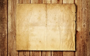 Wallpaper paper, tree, texture, cardboard, brown, wooden background