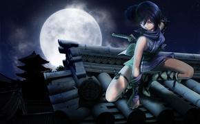 Picture stars, the moon, legs, ninja