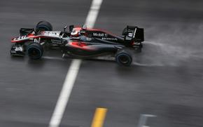 Picture McLaren, Profile, Formula 1, McLaren, Damp