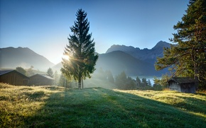 Picture grass, rays, dawn, morning, village, village