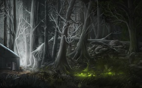 Picture forest, light, night, house, figure, swamp