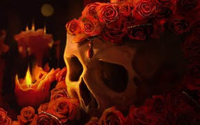 Picture FIRE, FLOWERS, RED, CANDLES, ROSES, SKULL, FLAME, PENDANT