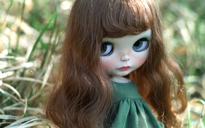 Picture eyes, hair, portrait, doll, girl