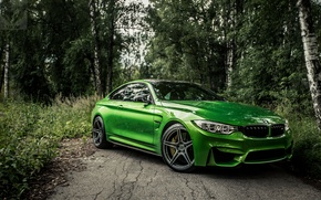 Wallpaper new, bestbmw, m4new, f82, bmwm4, bmw, BMW, auto, green, green