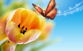 Picture butterfly, yellow, tulips, blue background