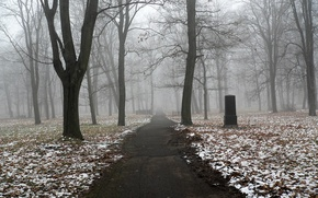 Wallpaper snow, fog, trees, autumn, monument, trail