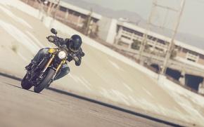 Picture Yamaha, moto, style, yellow, sport classic, 2016, XSR900
