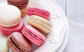 Picture cookies, plate, sweets, dessert, macaron, macaron