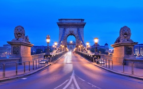 Picture road, the city, river, the evening, lighting, lights, lions, sculpture, Hungary, Hungary, Budapest, The Danube, ...
