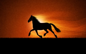 Picture horse, figure