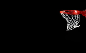 Picture mesh, black, ring, basketball