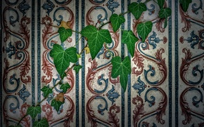 Picture leaves, wall, Wallpaper