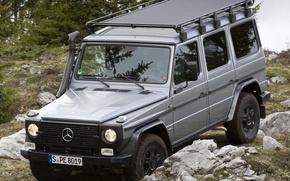 Picture Mercedes-Benz, Grass, Germany, Mercedes, Stones, Wallpaper, Jeep, SUV, CDI, Джи300, G300, Professional, Benz
