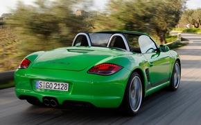 Picture machine, speed, Porsche, back, Boxster S