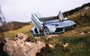 Picture Roadster, Lamborghini, Nature, Front, LP700-4, Aventador, Supercars, Silver, Door