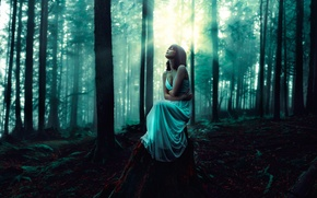 Picture girl, dress, lighting, in the woods, the whispering woods