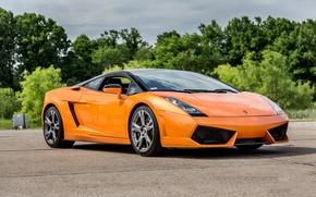 Picture Lamborghini, Gallardo, orange
