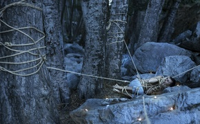 Picture forest, fear, the situation, guy, rope