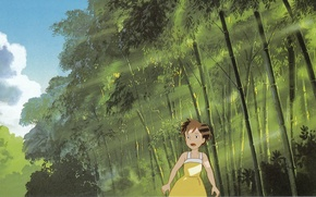 Picture summer, light, foliage, bamboo, the rays of the sun, my neighbor Totoro, searches, tonari no …
