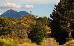 Picture road, autumn, trees, mountains, road, trees, Autumn
