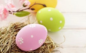 Wallpaper holiday, Easter, eggs, Easter, Easter, socket, yellow, pink, green, spring