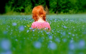 Picture grass, nature, children, mood, child, girl, red