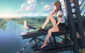 Picture girl, landscape, height, Seagull, anime, art, the sky. clouds, ddal