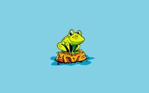 Wallpaper minimalism, frog, water, frog, island