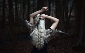 Picture girl, background, wings