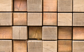 Picture macro, tree, squares