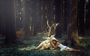 Picture forest, girl, deer