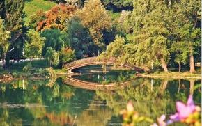 Picture autumn, bridge, lake, bridge, Autumn, lake, fall