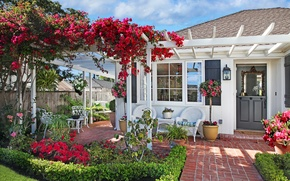 Picture flowers, garden, bougainvillea, chairs, house, grass, swing, lawn