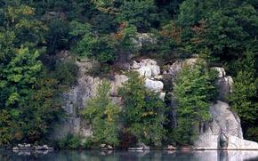 Wallpaper Trees, Reflection, Rocks, Water