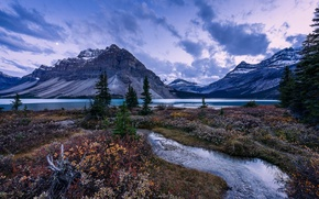 Picture grass, trees, mountains, lake, stream, the evening, Banff National Park, Alberta, Canada, Bow Lake