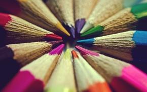 Picture color, macro, background, widescreen, Wallpaper, mood, colored, pencils, wallpaper, colorful, widescreen, background, full screen, HD …